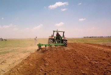 Периодът е подходящ за подхранване на есенниците с азотни минерални торове