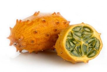Африканска краставица – новият хит на пазара в Перник