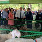 Министър Танева: До 1 млрд. лв. ще получат българските земеделски производители до края на годината
