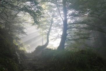 Облачно и мъгливо ще бъде над планините