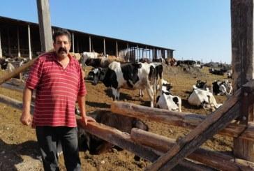 Фермер: Подарявам животните си на държавата и я напускам