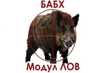 """Над 8000 проби от диви прасета са регистрирани в Модул """"Лов"""" от началото на ловния сезон"""