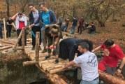 Над 1500 доброволци се включиха в 45 инициативи, организирани от ДПП Витоша през настоящата година