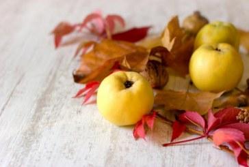 """Вълшебните свойства на """"медената ябълка"""""""