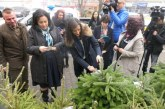 """Държавните горски стопанства предоставят 10 000 елхички за благотворителната кампания """"Посади надежда"""""""