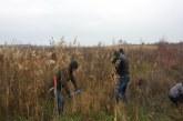 Продължава грижата за крайречните гори в землището на с. Маноле
